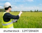 young asian male agronomist or... | Shutterstock . vector #1297284604