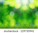Sunny Spring Nature Background