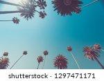 beverly hills palms vintage... | Shutterstock . vector #1297471171