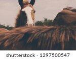 western equine image of horse... | Shutterstock . vector #1297500547