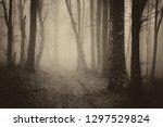 dark mysterious forest path ... | Shutterstock . vector #1297529824