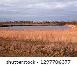 bawdsey pools  east lane ... | Shutterstock . vector #1297706377