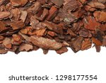 Tree Bark Pieces Isolated On...