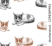 vector pattern of sketches of...   Shutterstock .eps vector #1298289901