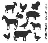 Stock vector set of domestic animals isolated on white vector illustration 1298340811