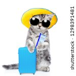 Kitten With Summer Hat And...
