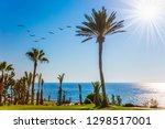 the concept of a classic beach ... | Shutterstock . vector #1298517001
