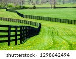 wide grassy lane with... | Shutterstock . vector #1298642494