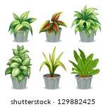 illustration of green leafy... | Shutterstock . vector #129882425