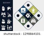 botany icon set. 13 filled... | Shutterstock .eps vector #1298864101