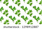 parsley isolated. pattern of ... | Shutterstock . vector #1298912887