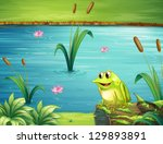 Illustration Of A Frog At The...
