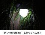 watcher in the night | Shutterstock . vector #1298971264