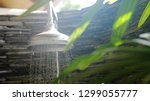 summer shower head water spray... | Shutterstock . vector #1299055777