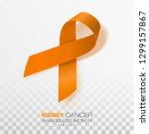 national kidney cancer... | Shutterstock .eps vector #1299157867