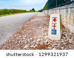 traditional shell sign and... | Shutterstock . vector #1299321937