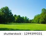 Garden Lawn   Blue Sky