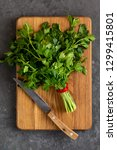 bunch of parsley isolated on a... | Shutterstock . vector #1299415801