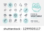 Food   Vegetable Vector Icons
