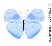 Stock photo blue butterfly isolated on white background 1299581344