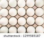 White Chicken Eggs In Egg Tray...