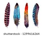watercolor feathers set... | Shutterstock . vector #1299616264