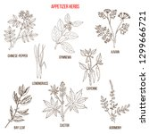 best appetizer herbs collection.... | Shutterstock .eps vector #1299666721