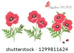 vector. bouquet of flowers.... | Shutterstock .eps vector #1299811624