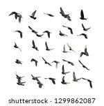 flying doves on white background | Shutterstock . vector #1299862087