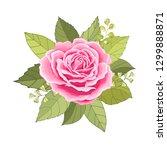 the rose elegant card.  design... | Shutterstock .eps vector #1299888871