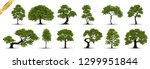Stock vector collection realistic trees isolated on white background 1299951844