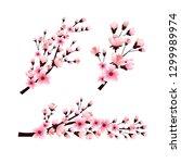 set of sakura branches with... | Shutterstock .eps vector #1299989974