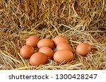eggs in straw nest of hen | Shutterstock . vector #1300428247