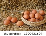 eggs in and out basket on straw ... | Shutterstock . vector #1300431604