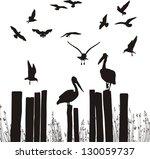 gulls and pelicans | Shutterstock .eps vector #130059737