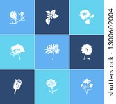 flora icon set and magnolia... | Shutterstock .eps vector #1300602004