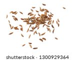 caraway isolated on white... | Shutterstock . vector #1300929364