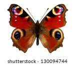 Stock photo european peacock butterfly inachis io 130094744