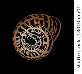 spiral snail shell. helix made... | Shutterstock .eps vector #1301055541