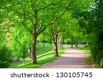 pedestrian walkway for exercise ... | Shutterstock . vector #130105745