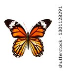 Stock photo natural orange butterfly isolated on white background 1301128291