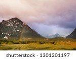 rainbow above mountains.... | Shutterstock . vector #1301201197