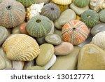 sea urchin an pebbles - stock photo