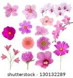 set of pink color flowers... | Shutterstock . vector #130132289