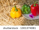 sweet peppers in and out light... | Shutterstock . vector #1301374081