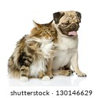 Stock photo cat and dog looking away isolated on white background 130146629