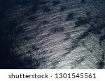 aerial image of a seabed | Shutterstock . vector #1301545561