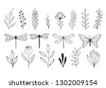 Stock vector set of hand drawn herbs dragonflies and butterfly vector summer items isolated hand drawn ink 1302009154