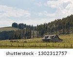 teichalm  austria   july 14 ... | Shutterstock . vector #1302312757