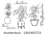 illustration of houseplants ...   Shutterstock .eps vector #1302402721
